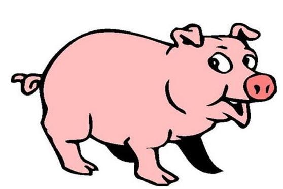 2017属猪的运气,属猪人2017年事业运势如何?会有怎样的好处?
