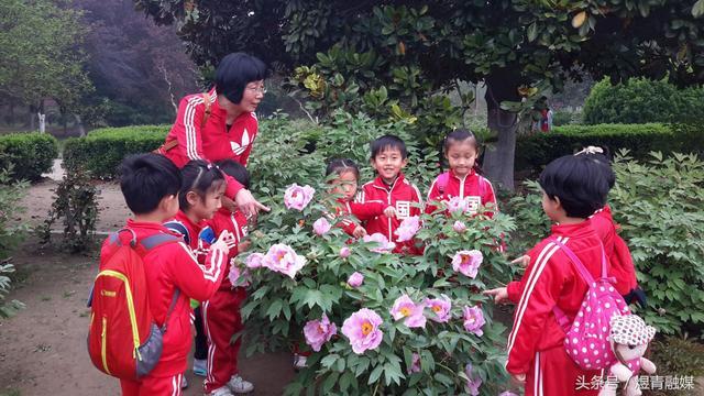 形容幼儿园春游的短句,亲近自然,快乐成长——开封市大纸坊幼儿园春游记