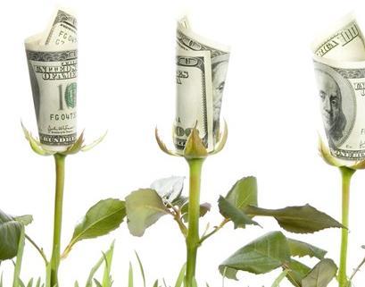 属猪的是什么命,命里带财的三大生肖,这辈子就注定了有钱财