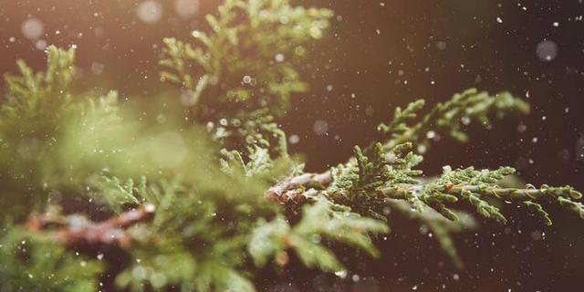 描写冬天寒冷的句子,形容天气冷的唯美句子 形容天气寒冷的好句子