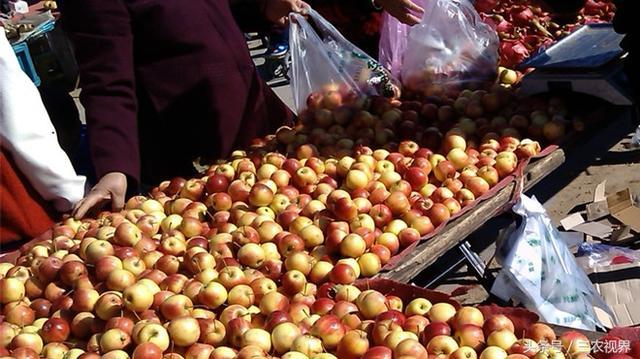 老品种,老品种的苹果,农村集上才有的卖,你喜欢吃哪种?