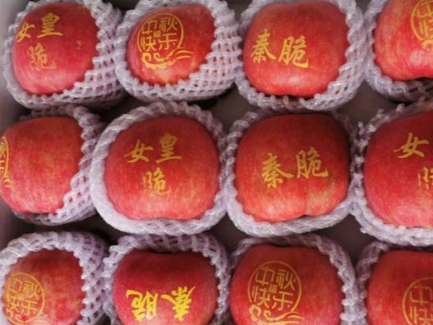 """个由我国自主选育的苹果品种,你看好哪一个?"""""""