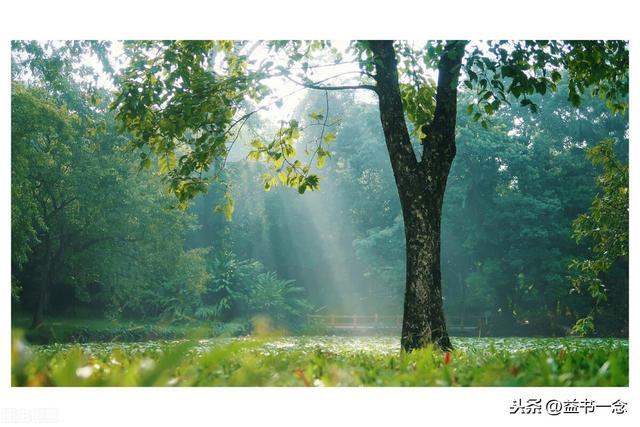 温暖的句子,「光在前方,路在脚下」!那些惊艳了时光温暖了人心的句子