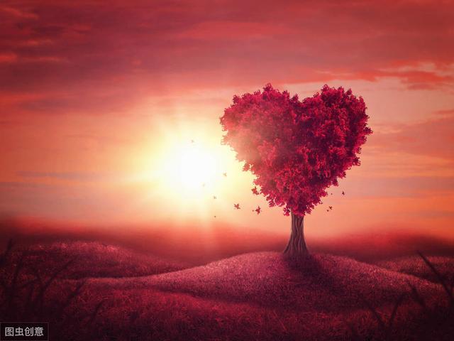 爱是什么,心理学家对爱的定义
