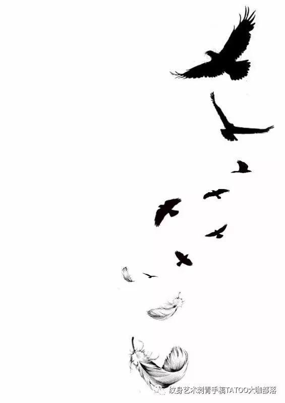 羽毛的寓意,欧美纹身图案寓意第九集:羽毛