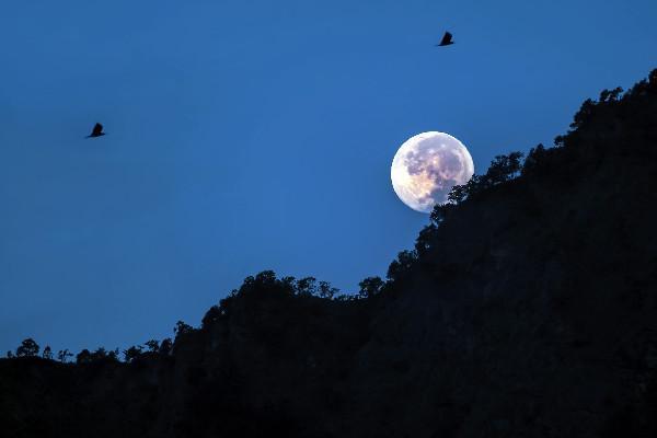 """张继的诗,""""月落乌啼霜满天""""这句诗,究竟哪里有问题,为何千年来争议不止"""