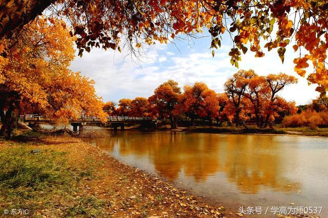 秋天的诗句,秋天的诗句有哪些 描写秋天景色优美古诗