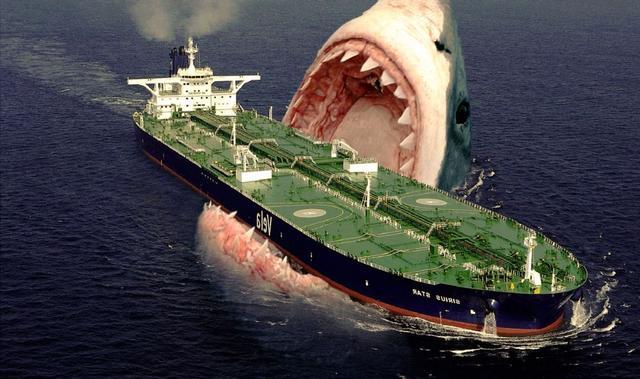 鲨鱼图片,体长18米的巨齿鲨是如何灭绝的?它为何败在6米长的大白鲨手下