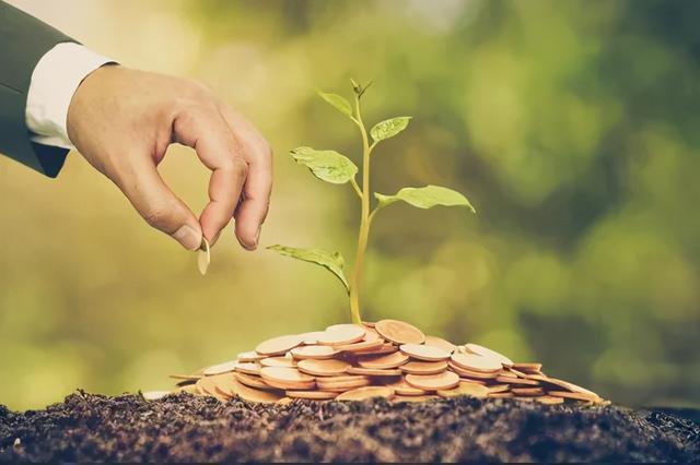 应对狂跌,小股民关注的是——买了的股票基金能涨起来吗?