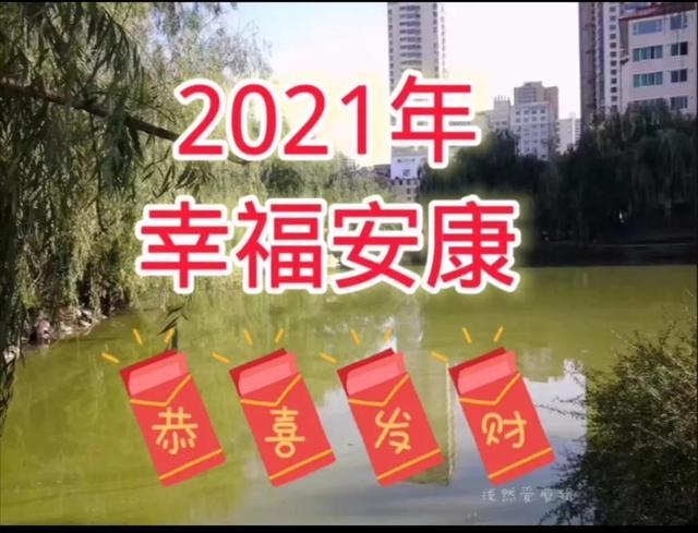 春节日记300字,过年随笔日记(一)