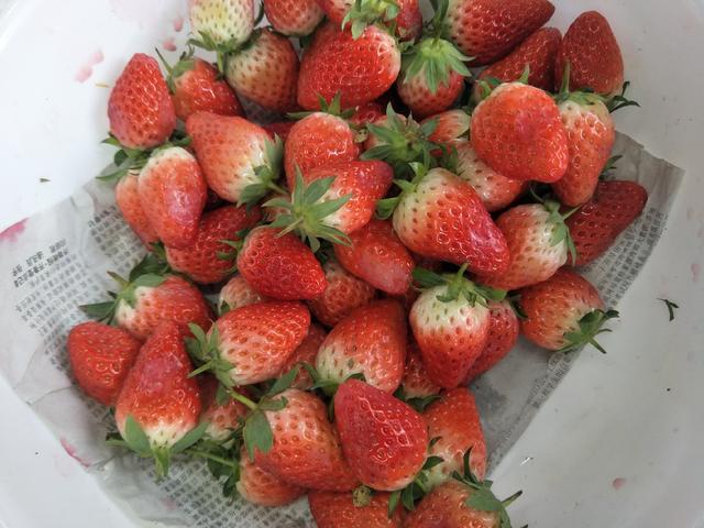 鲜草莓的吃法,草莓不洗可以直接吃吗?这才是草莓的正确吃法,清香可口味道好