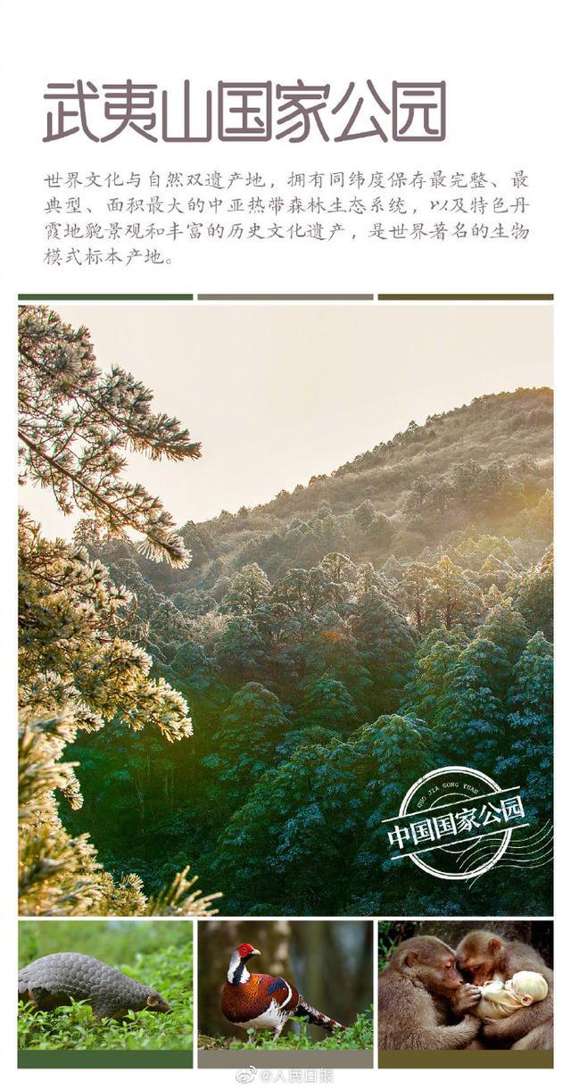 第一批国家公园名单公布 海南热带雨林国家公园入列 全球新闻风头榜 第5张