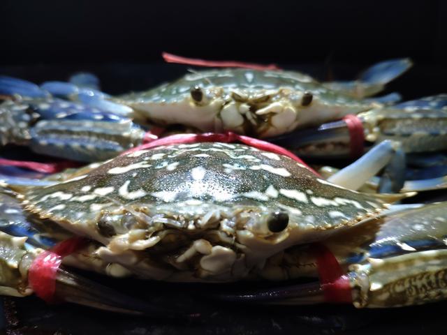 花蟹的吃法,开海啦,来一份姜葱炒花蟹,秋后海鲜正当时,蟹肥膏黄好吃不贵