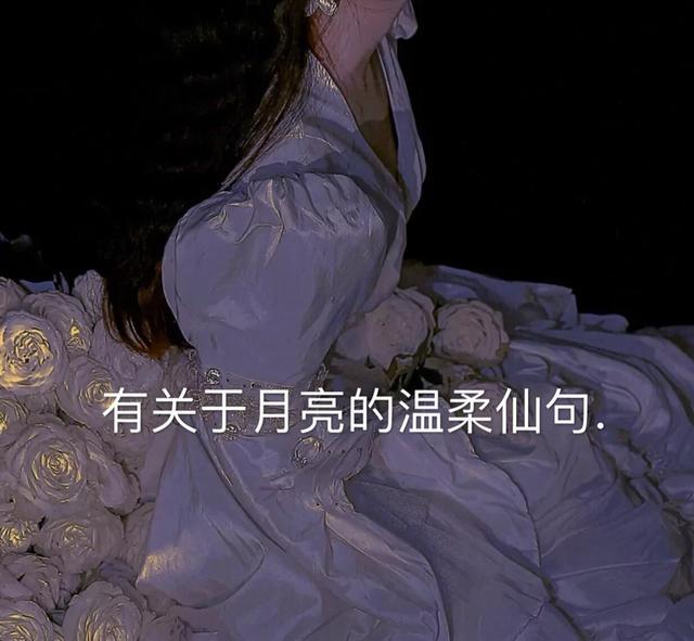 描写月光的句子,有关于月亮的温柔仙句!