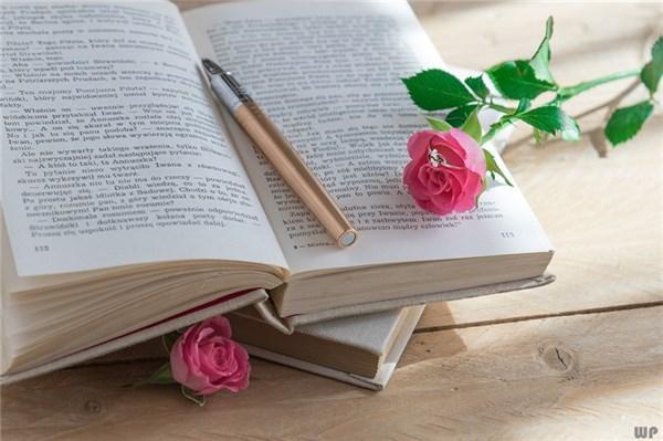 清新的句子,小清新治愈系语录,句句都是那么温情暖心,送给你!