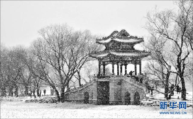 雪景图片大全唯美,美如铅笔画!黑白片儿拍雪景也能拍出如此唯美意境