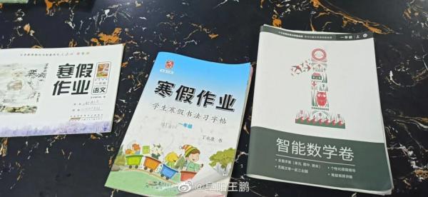 阜阳中小学寒假才刚开始一(二)班谢雨欣小孩子的3本《寒假作