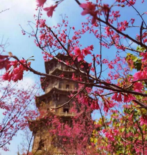 三的祝福语,三月三文案祝福语大全 三月三放假说说心情开心的句子