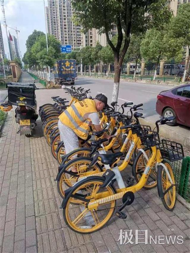 外卖最新消息,共享单车探索管理新模式,850名外卖小哥参与摆放
