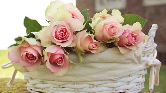 爸爸生日祝福语,写给老爸的诗—祝老爸生日快乐,2021平平安安