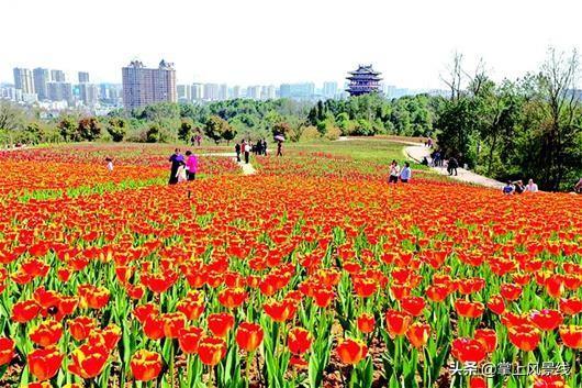 宜昌旅游景点,宜昌:这些景点特别适合自驾游!而且一律免费!收藏哦