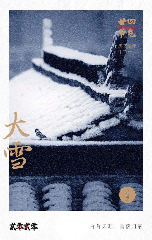 下雪天图片,今日大雪:白首天涯,雪落归家