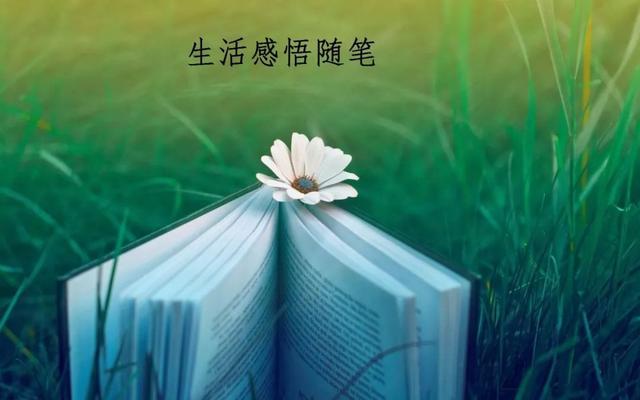 留言短句暖心,写给爱人的暖心情话
