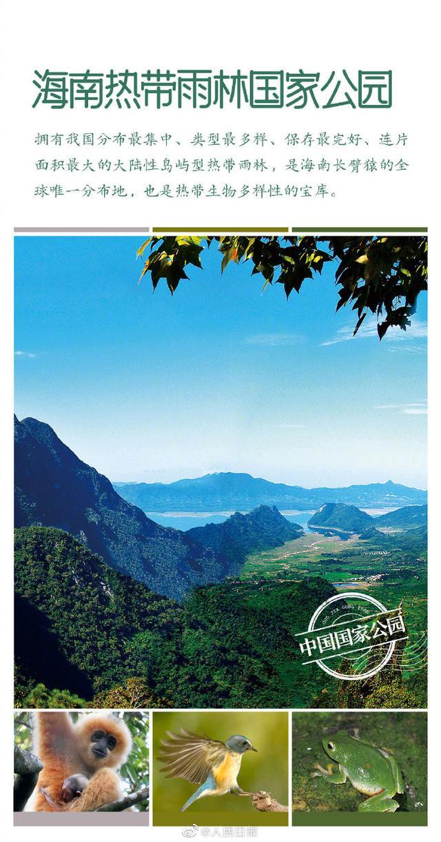 第一批国家公园名单公布 海南热带雨林国家公园入列 全球新闻风头榜 第4张