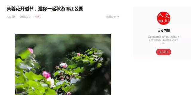 成都锦江公园采风行首期活动圆满落下帷幕