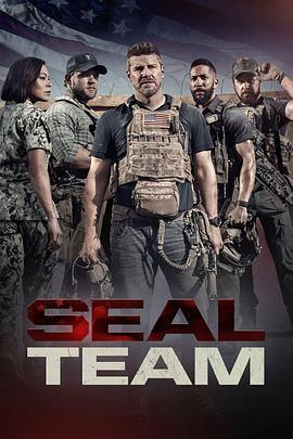 海豹突击队 第五季海报