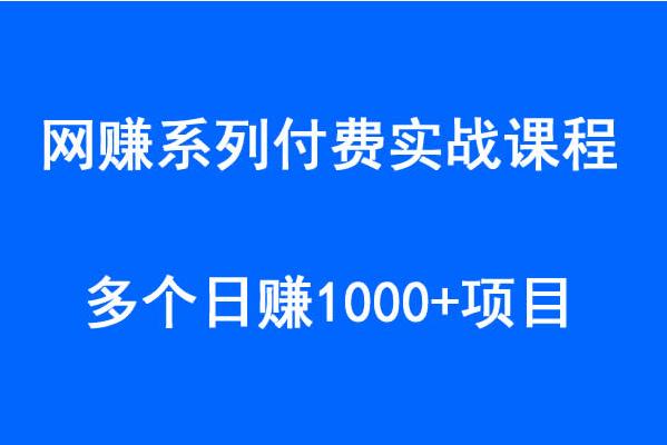 网赚系列付费教程:日赚1000+的网赚项目 的图片第1张