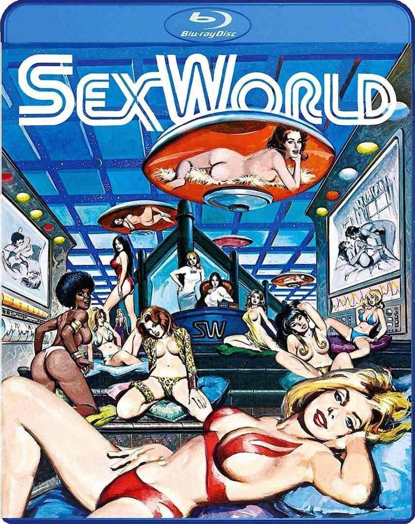 性爱世界海报