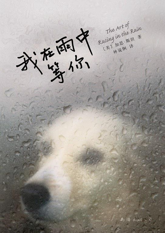 《我在雨中等你》   加思·斯坦   txt+mobi+epub+pdf電子書下載