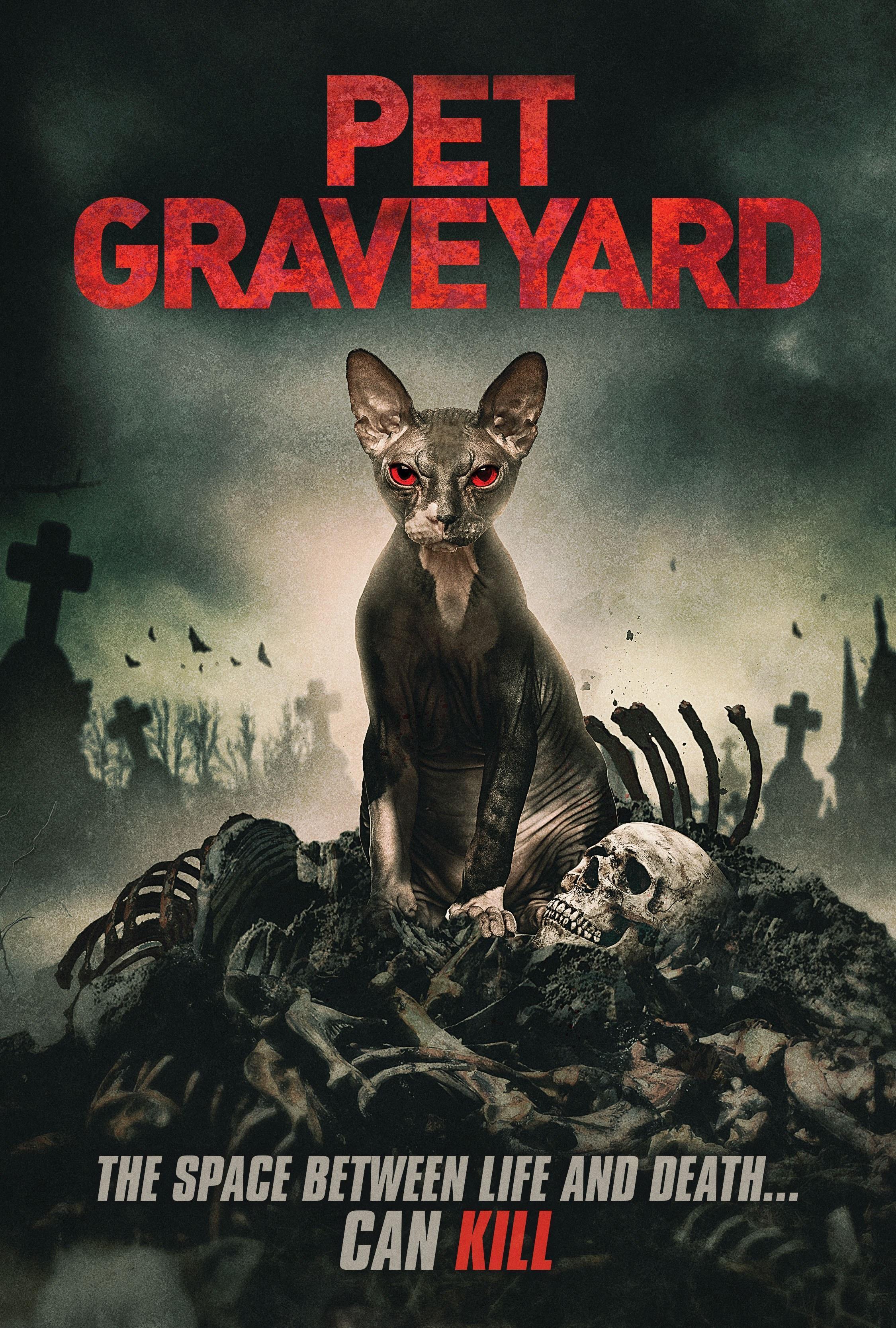 宠物坟墓 Pet Graveyard720p (2019)百度云迅雷下载
