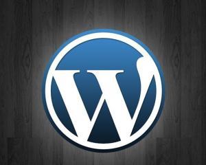 解决WordPress设置错误的url网站不能访问的问题