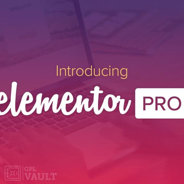 WordPress插件-可视化编辑器-Elementor Pro汉化版【v3.0.6】