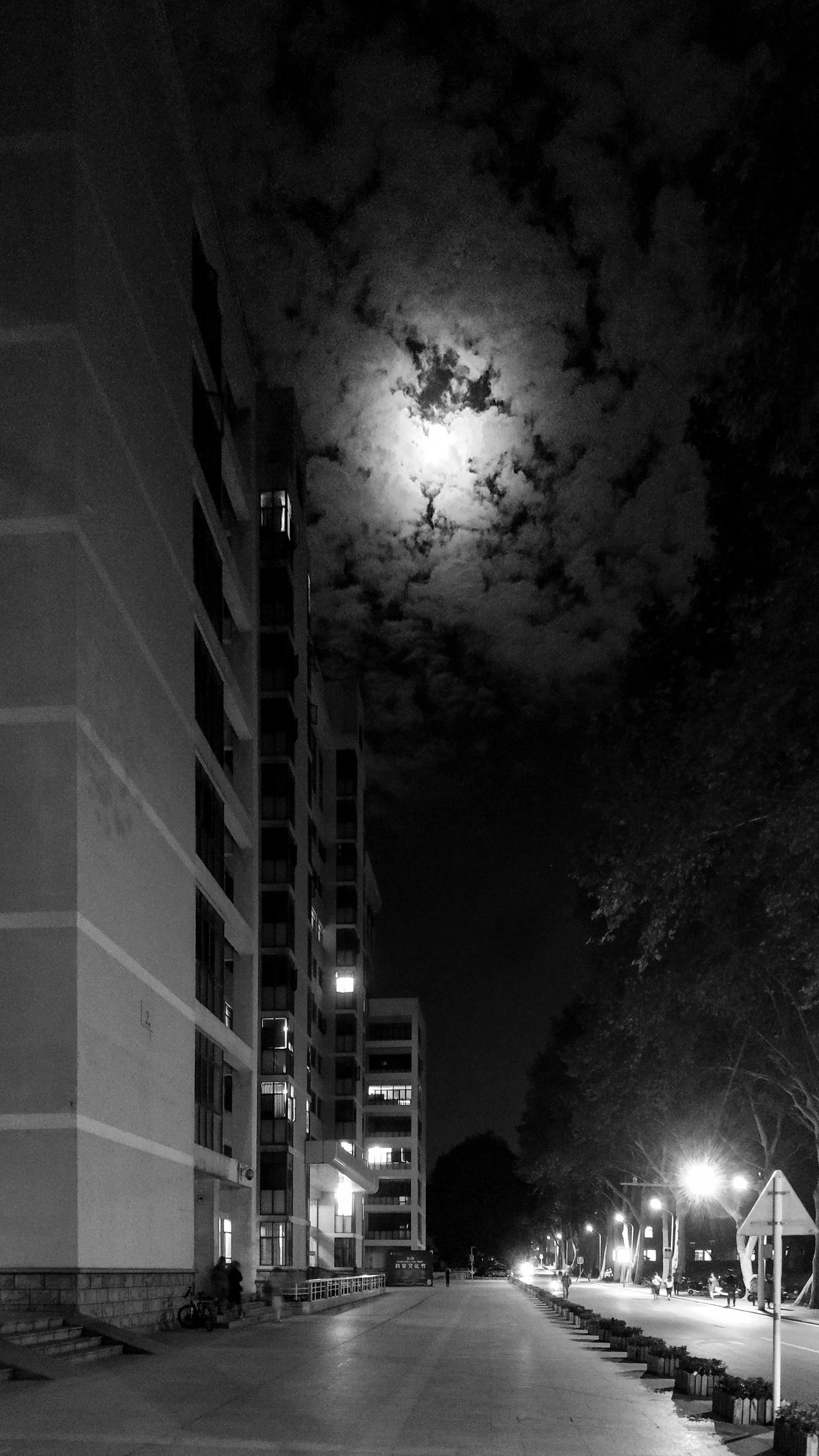九号楼下的月色