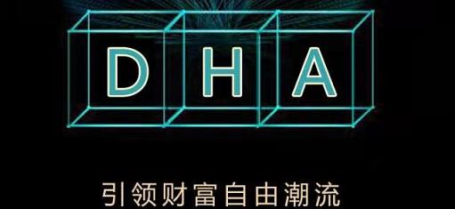DHP首码:送10000币,oko模式,星级达人无限代收益-首码网