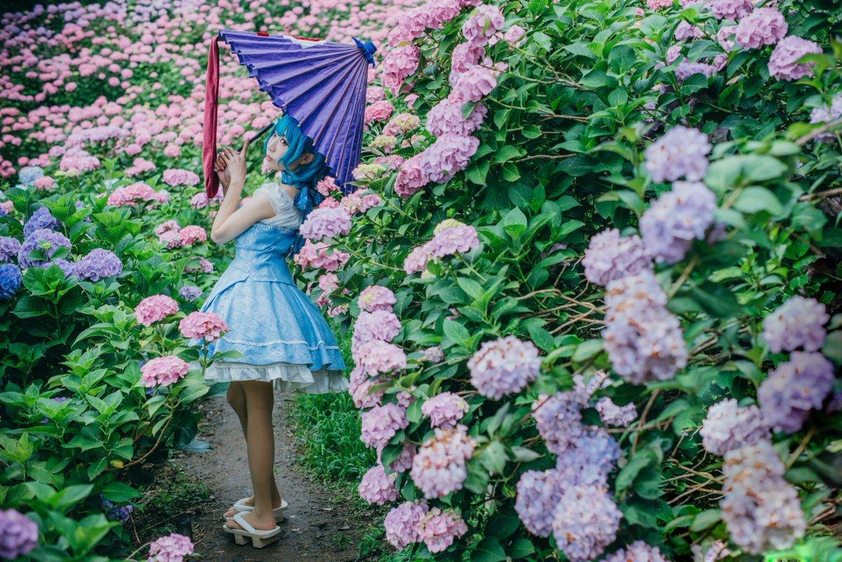 多多良小伞