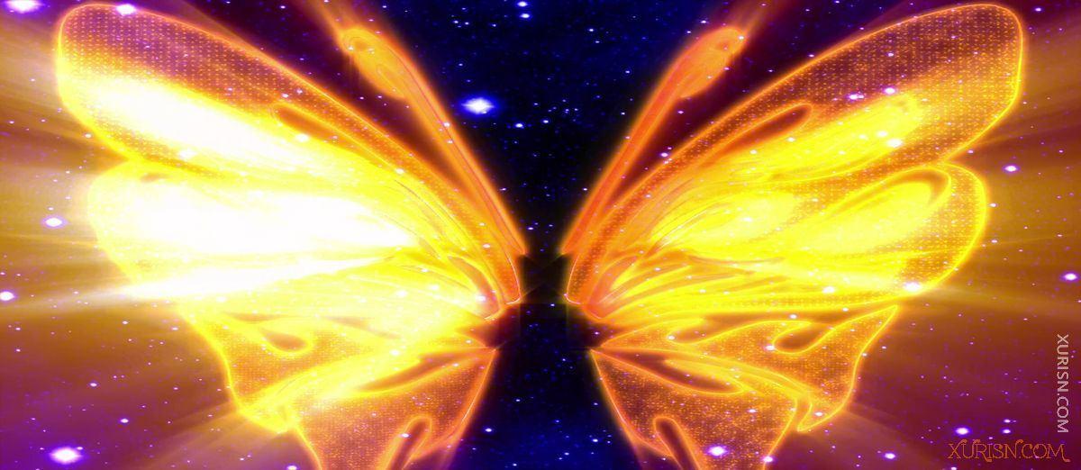视频素材-11款唯美婚礼新娘出场天使翅膀视频素材集(10)