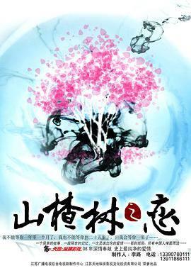 山楂樹之戀2011