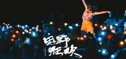 【海南】海棠湾水稻国家公园夜场《田野狂欢》演出+电瓶车 - 成人票