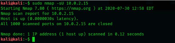 Linux系统如何使用Nmap扫描UDP端口?