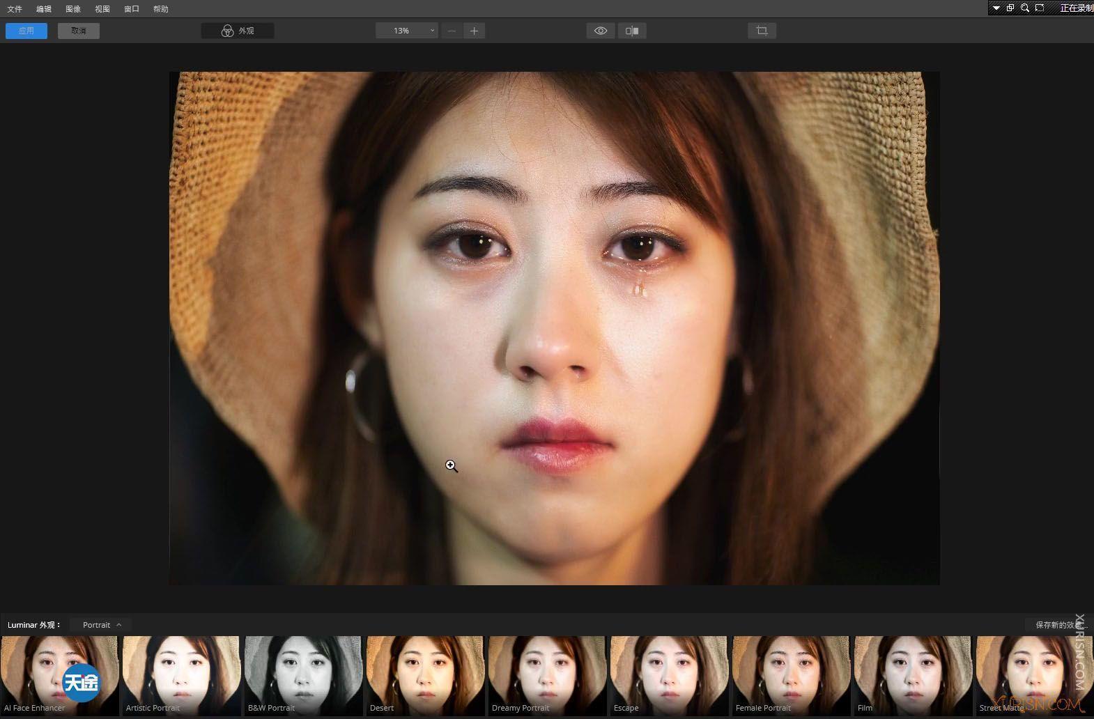 软件教程-Luminar 4中文版视频教程中文语音中文界面(7)