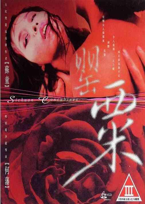 1994L粟海報劇照