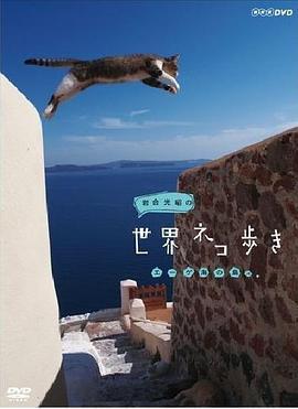 岩合光昭的猫步走世界