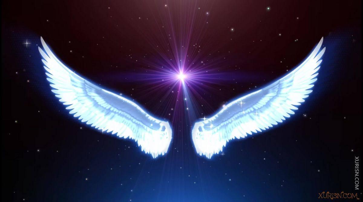 视频素材-11款唯美婚礼新娘出场天使翅膀视频素材集(12)