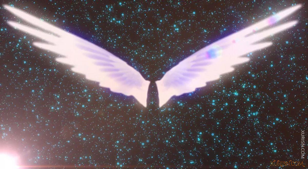 视频素材-11款唯美婚礼新娘出场天使翅膀视频素材集(6)