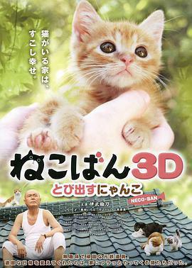 小猫跳出来3D2020