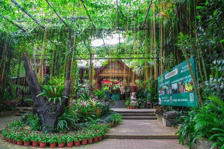 美食之旅(门票+游览车票+雨林自助餐)提前1小时订